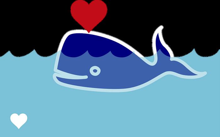 Big Spender Whales - A Cam Model's Dream Regular